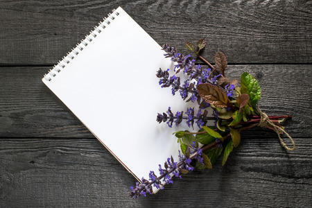 antispasmodic: Medicinal plant Ajuga reptans and notebook to write recipes and methods of application. Ajuga reptans used in herbal medicine, edible plant, nectariferous and is used in horticulture