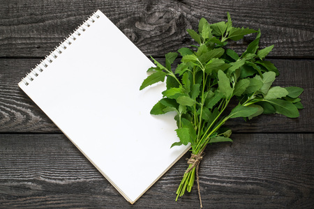 Medicinal plant Atriplex (saltbush, orache) and notebook to write recipes and methods of application. Used in herbal medicine, cooking, food for animals, to prevent soil erosion