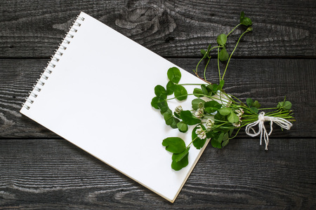 Medicinal plant Trifolium repens or white clover (also known as Dutch clover and Ladino clover) and notebook to write recipes and methods of application. Used in herbal medicine, honey plant