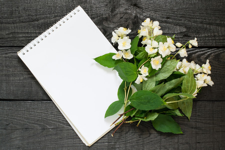 Medicinal plant philadelphus (mock-orange) and notebook to write recipes and methods of application. Used herbal medicine and aromatherapy