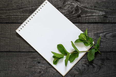 Medicinal plant mint (Mentha spicata) and notebook to write recipes and methods of application. Used in aromatherapy, phytotherapy, SPA, healthy and vegetarian food