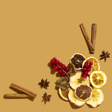 Ingredients for making winter hot drinks. Dried slices of apples, oranges, lemons, kiwi, currant berries, cinnamon sticks, star anise in form of vignette. Square image with copy space