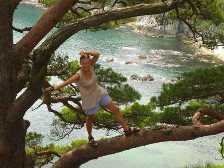girl on the pine branch  photo