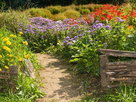 Beautiful flowerbed behind rural retro fences photo