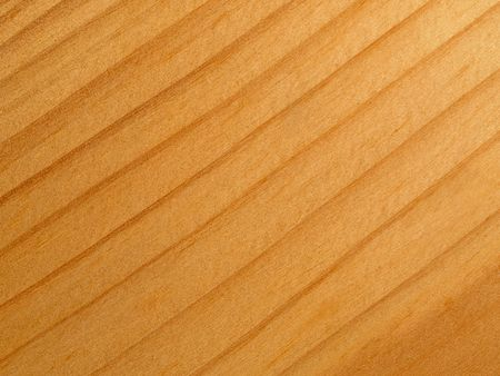 logwood: fresh fir wood textured background