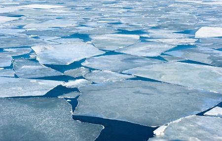 breaking spring ice floe of japanese sea