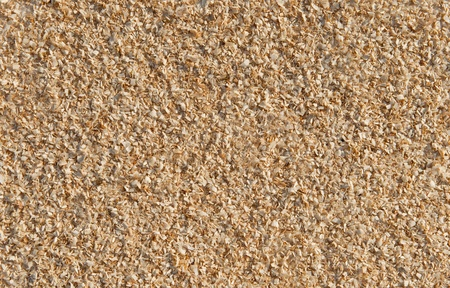 natural sawdust textured background  photo