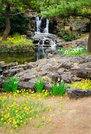 Springtime view at Hallim Park of Jeju island Korea