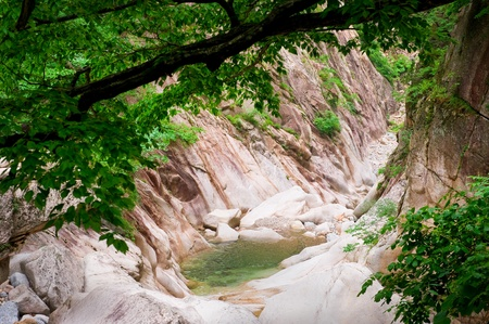 forest creek canyon view at Seoraksan National Park, South korea  photo
