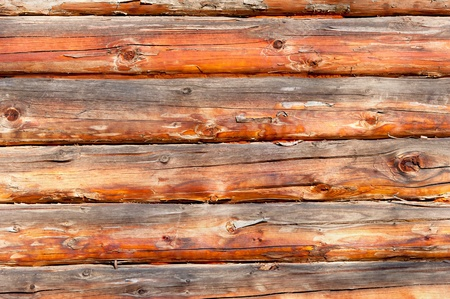 logwood: fir logs textured background Stock Photo