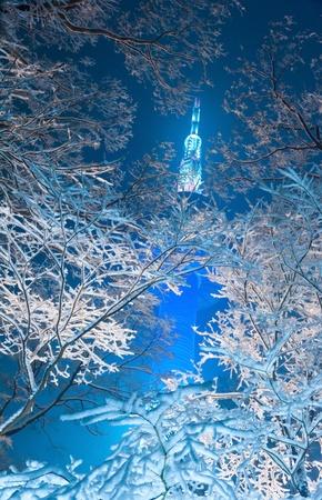 Night snowfall view of Namsan tower of Seoul Korea  photo