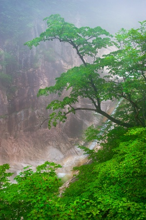 Waterfall foggy mountain view at Seoraksan National Park, South korea  photo