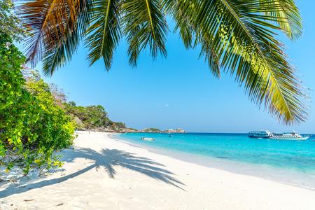 similan islands: Beach of Similan Koh Miang Island in national park, Thailand Stock Photo