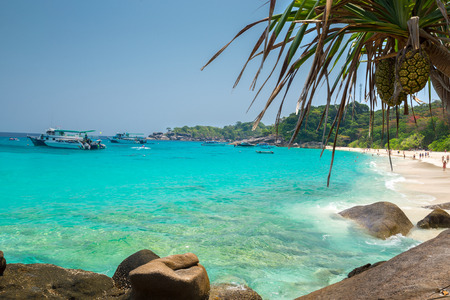 yai: Beach of Similan Koh Miang Island in national park, Thailand Stock Photo
