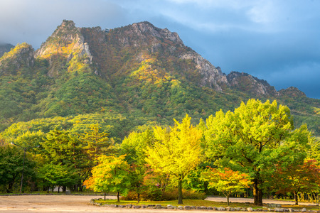 Seorak fall view in the morning light, Seoraksan National Park, South korea Stock Photo - 35757992