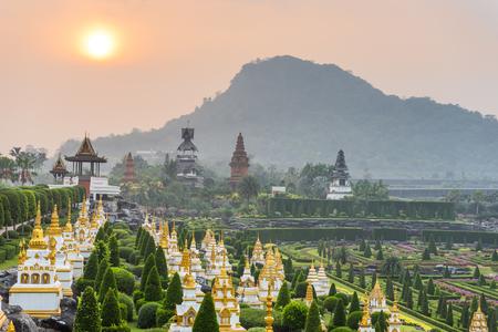 plant nature: French garden of Nong Nooch Tropical Botanical Gardenat sunrise , Pattaya, Thailand