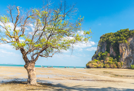 railay: low tide at East Railay beach, one of the most popular rock climbing locations in Asia. Railay, Krabi, Thailand Stock Photo