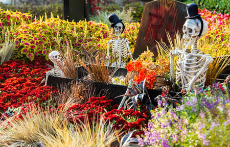 fiestas: SEOUL, SOUTH KOREA - OCTOBER 25: Halloween party decorations at Everland Theme Park on OCTOBER 25, 2013 in Seoul, South Korea Editorial