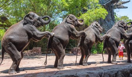 BANGKOK, THAILAND - MARCH 31, 2015: Group of  elephants at Safari World Park on March 31, 2015 in Bangkok, Thailand. Editorial