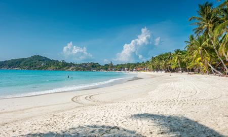 Vista tropicale della spiaggia con le palme all'isola di Phangan, Thailand