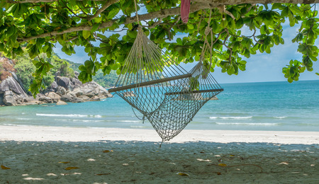 View of hammocks on tropical beach on the Phangan island, Thailand. Beautiful tropical island with sand beach, palm trees. Travel concept Reklamní fotografie