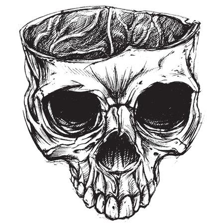 dessin tete de mort dessin de crne 02 illustration