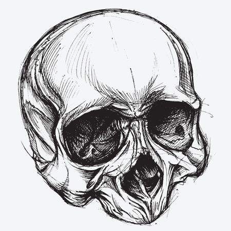 dessin tete de mort dessin de crne illustration