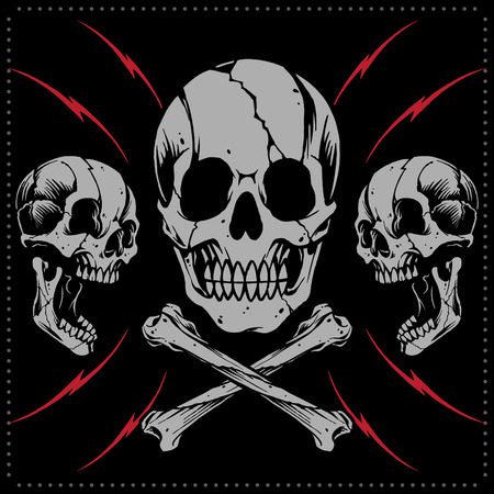 Skulls and bone cross vector