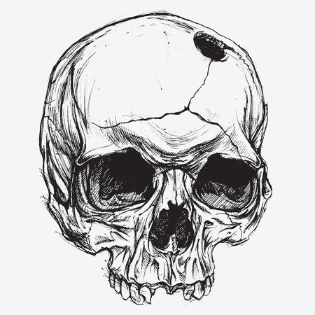 dessin tete de mort crne vecteur