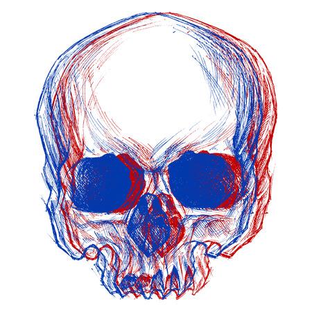 頭蓋骨 3 D