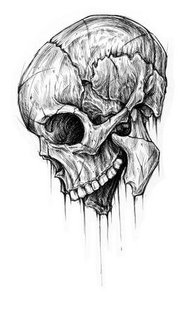 cross hatching: Skull traditional ballpoint pen drawing.