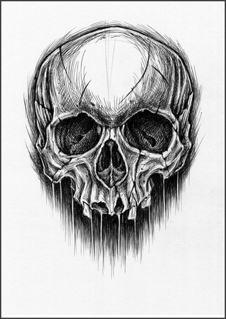 Skull traditional ballpoint pen drawing. photo