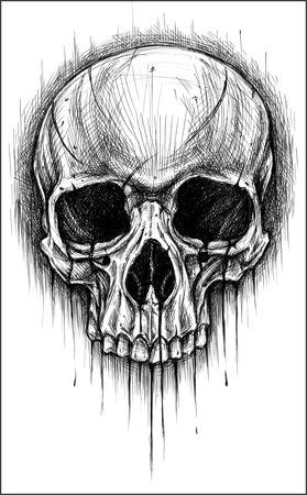 Skull traditional ballpoint pen drawing.