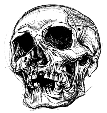 horror: Skull Drawing line work vector