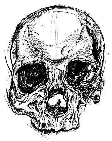 line work: Broken Skull Drawing line work vector