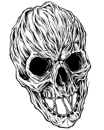 Skull Drawing line work vector Stock Vector - 70579204
