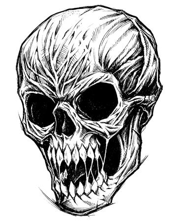 頭蓋骨の図面線作業ベクトル