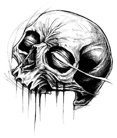 line work: Skull Drawing line work vector