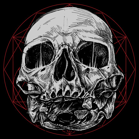cross hatching: Skull and Sacred Geometry Symbol vector for use.