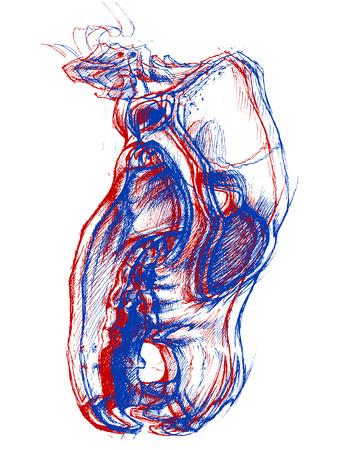 zeichnen: Hund Schädel 3D