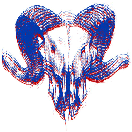 Ram 頭蓋骨 3 D  イラスト・ベクター素材