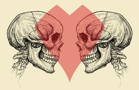 Couple Skulls and Heart Symbol vector.