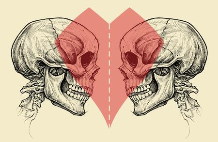 カップル頭蓋骨とはさみ切断線とハートマーク。  イラスト・ベクター素材