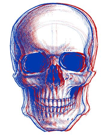 Skull 3D Ilustrace