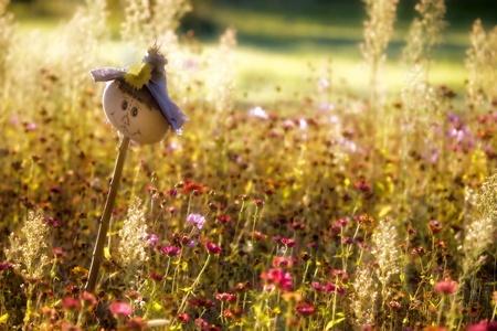 espantapajaros: Feliz espantapájaros en el jardín de flores silvestres. Foto de archivo