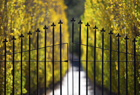 iron gate: A closed wrought iron gate protects the entrance to an exclusive estate   Stock Photo