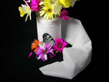 unravel: flower bouquet in toilet paper with butterfly