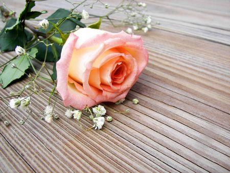 peach rose on wood table top Stok Fotoğraf