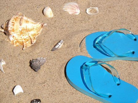 flops: Flip flops and seashells on the beach.