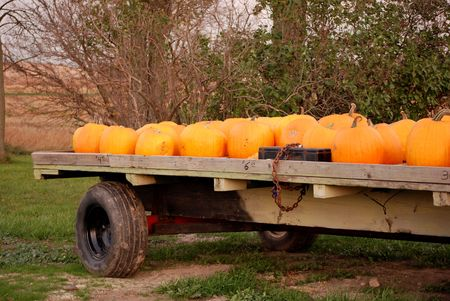 Autumn pumpkins on an old hay wagon. photo